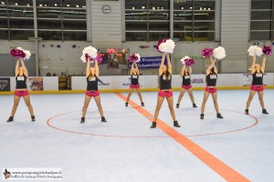 Yeti's, Grenoble, Roller Hockey, Rouen, France, Pompom Girls des Alpes (3)