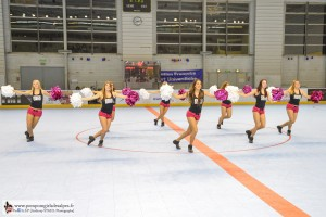 Yeti's, Grenoble, Roller Hockey, Rouen, France, Pompom Girls des Alpes (4)