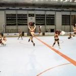 ppga-pompomgirlsdesalpes-grenoble-hockey-hockeyglace-rollerhockey-france-14