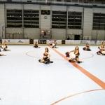 ppga-pompomgirlsdesalpes-grenoble-hockey-hockeyglace-rollerhockey-france-18