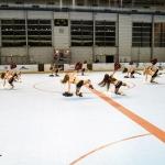 ppga-pompomgirlsdesalpes-grenoble-hockey-hockeyglace-rollerhockey-france-19
